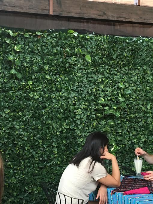 ivy-wall