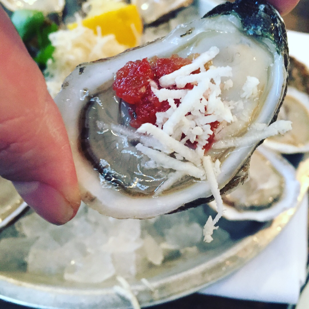 close up oyster