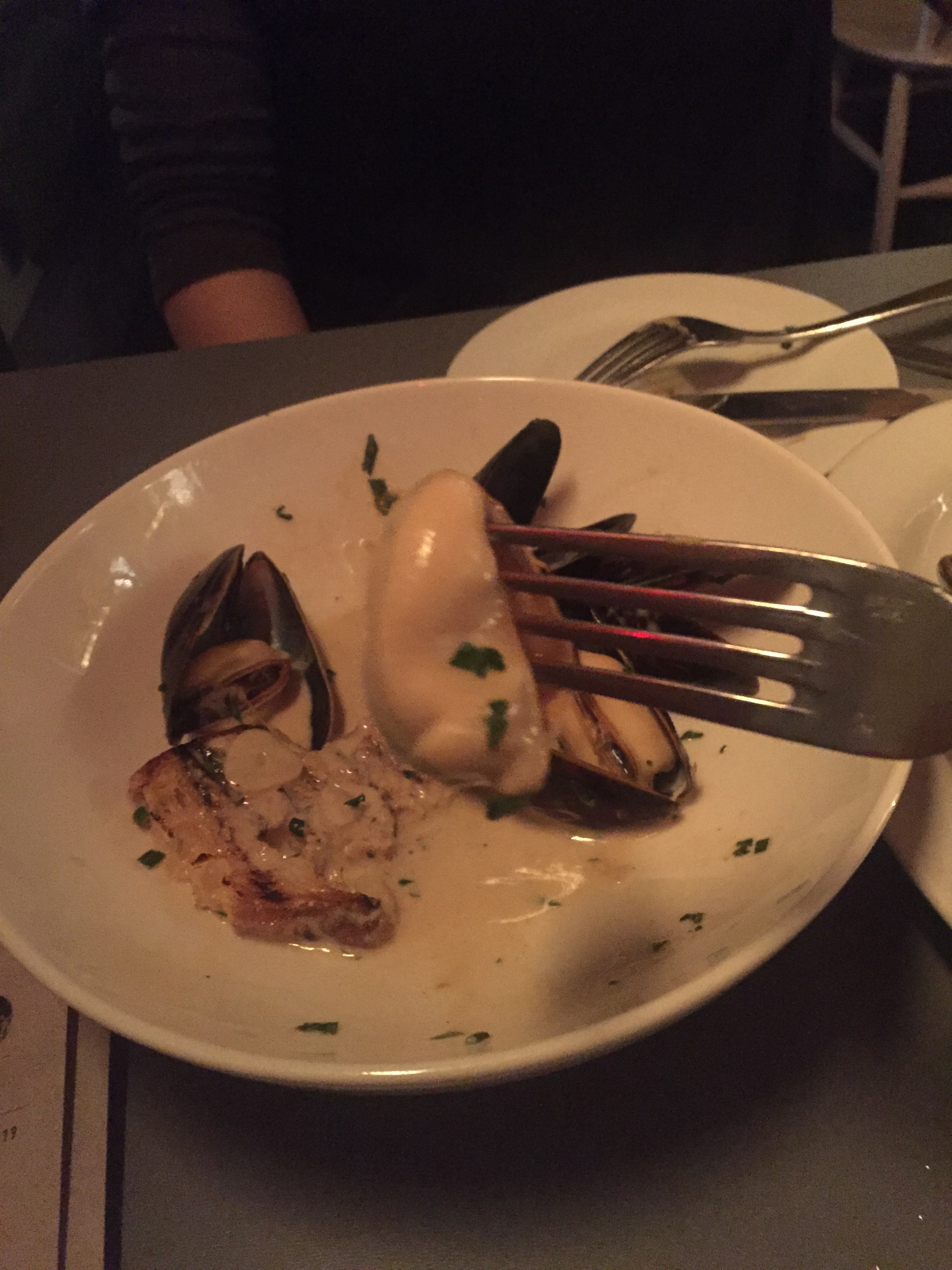 mussel one