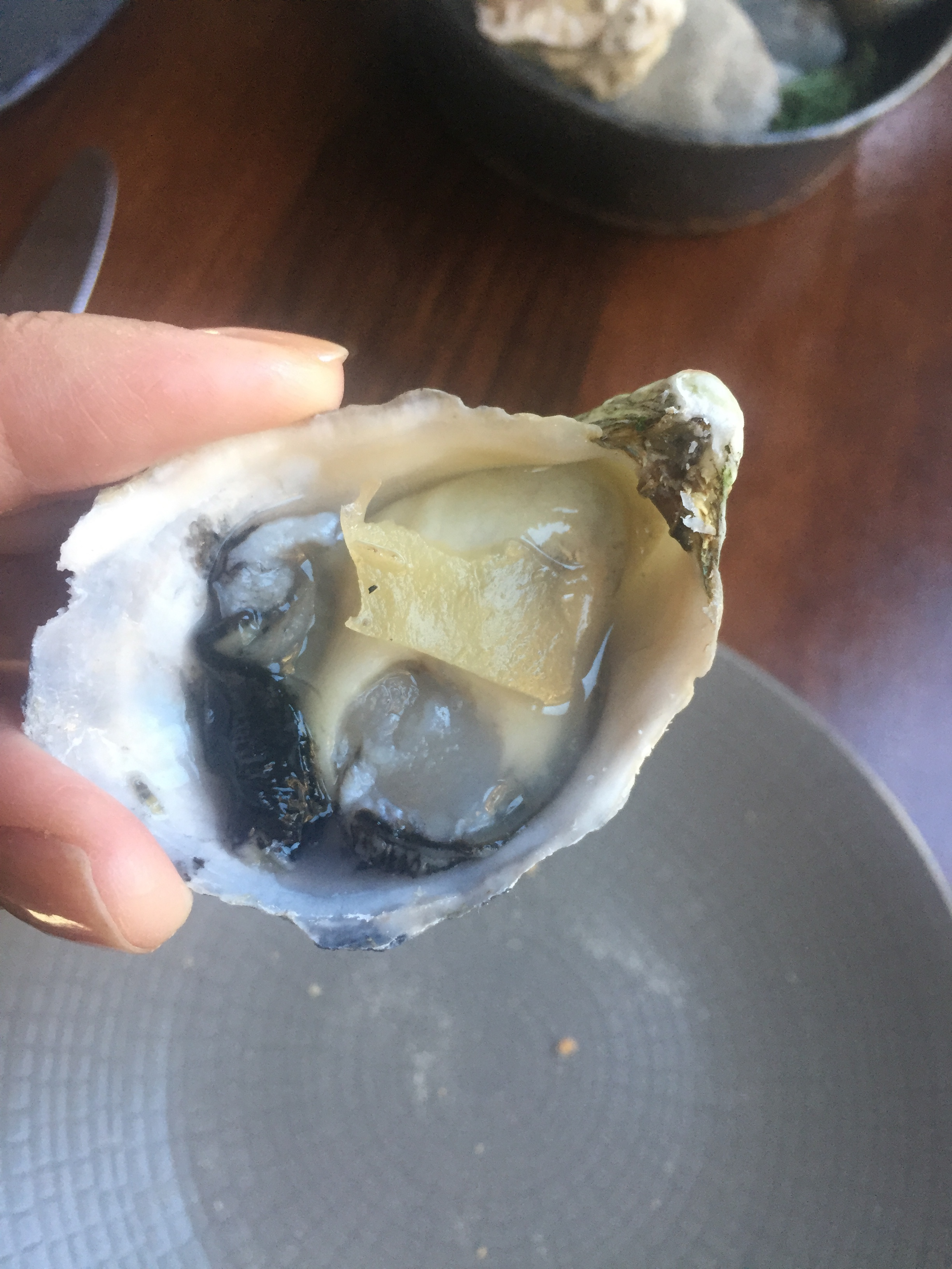 Oyster 3